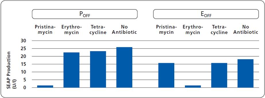indu2_antibioticssupression_independentcontrol