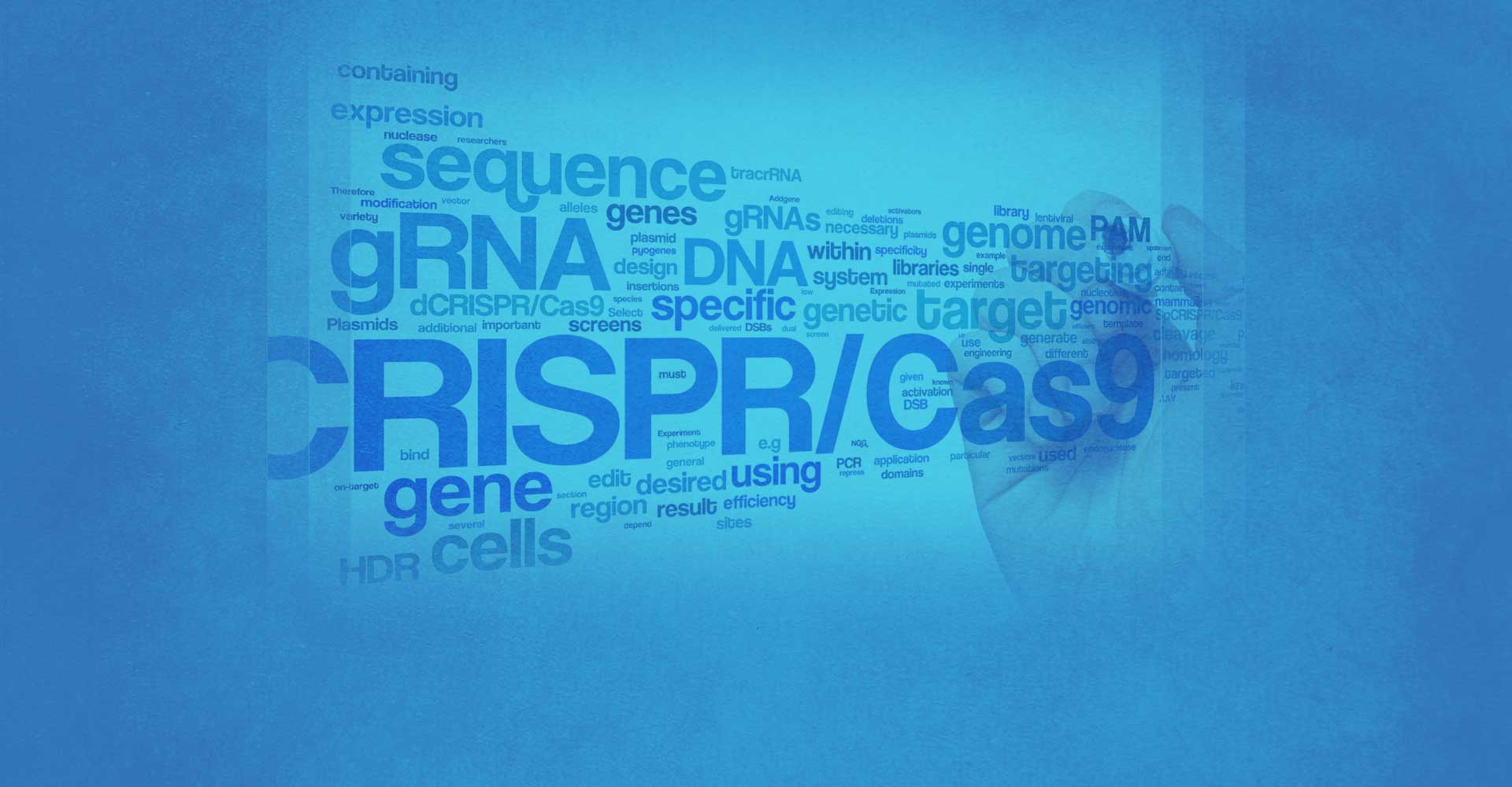 CRISPR Services by PolyGene